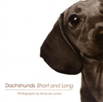 Dachshunds Short And Long (Hardback)