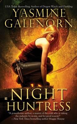 Night Huntress (Paperback)