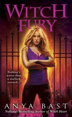 Witch Fury (Paperback)