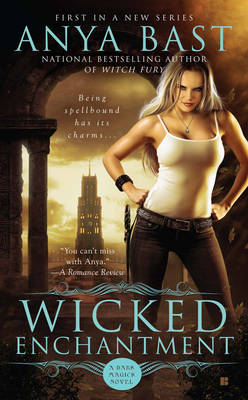 Wicked Enchantment (Paperback)