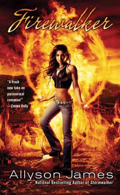 Firewalker (Paperback)