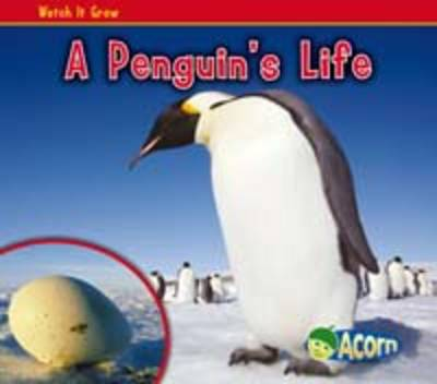A Penguin's Life - Acorn: Watch It Grow (Hardback)