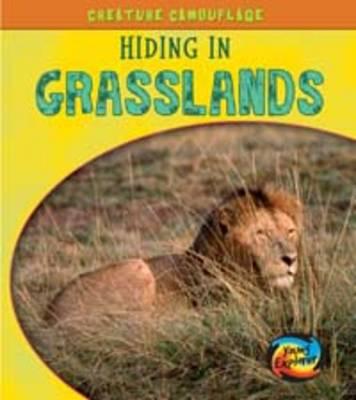 Hiding in Grasslands - Young Explorer: Creature Camouflage (Hardback)