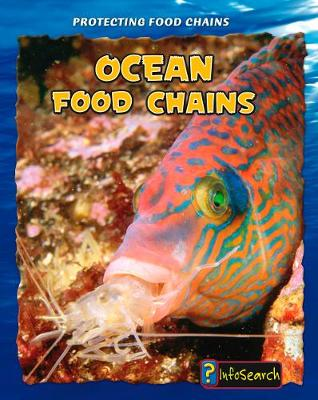 Ocean Food Chains - InfoSearch: Protecting Food Chains (Hardback)