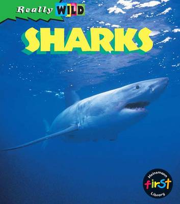 Sharks - First Library: (Paperback)