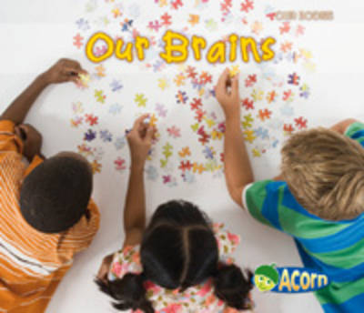 Our Brains - Acorn: Our Bodies (Paperback)