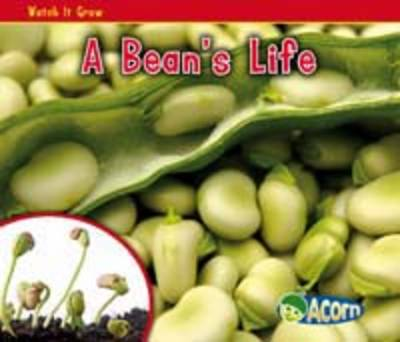 Watch it Grow: Pack A - Acorn: Watch it Grow (Paperback)
