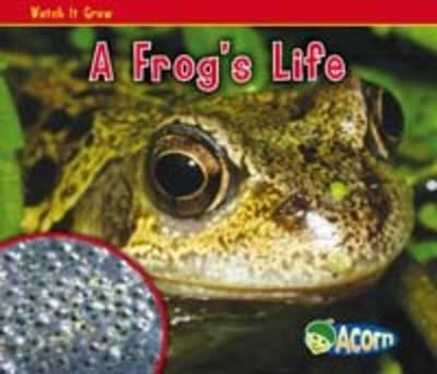 Watch it Grow: Pack B - Acorn: Watch it Grow (Paperback)
