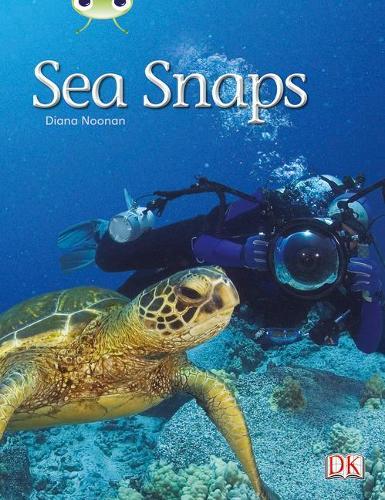 BC NF Green A/1B Sea Snaps - BUG CLUB (Paperback)