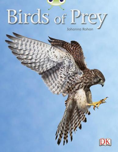 BC NF White A/2A Birds of Prey - BUG CLUB (Paperback)