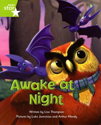 Fantastic Forest Green Level Fiction: Awake at Night - FANTASTIC FOREST (Paperback)