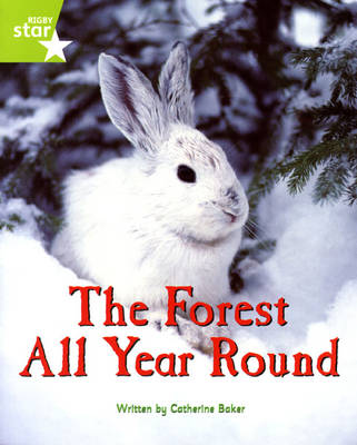 Fantastic Forest Green level Non-fiction: The Forest all Year Round - FANTASTIC FOREST (Paperback)