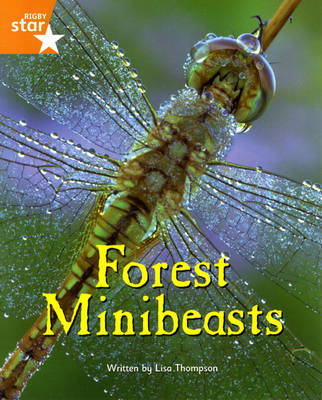 Fantastic Forest Orange Level Non-Fiction: Forest Minibeasts - FANTASTIC FOREST (Paperback)