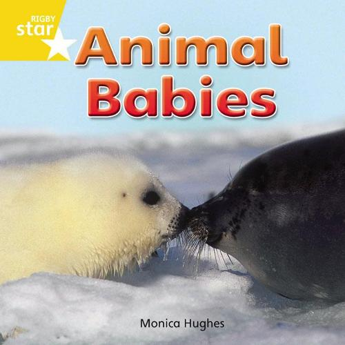 Rigby Star Independent Reception Yellow Non Fiction Animal Babies Single - STAR INDEPENDENT (Paperback)