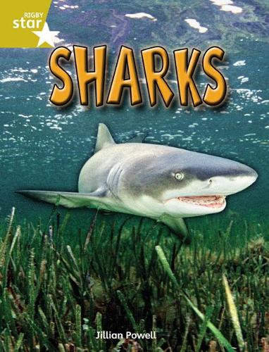 Rigby Star Independent Year 2 Gold Non Fiction Sharks Single - STAR INDEPENDENT (Paperback)
