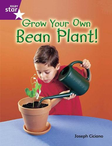 Rigby Star Guided Quest Purple: Grow Your Own Bean Plant! - STARQUEST (Paperback)