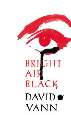 Bright Air Black (Hardback)