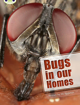 BC NF Lime A/3C Bugs in our Homes - BUG CLUB (Paperback)