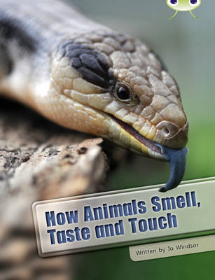 BC NF White A/2A How Animals Smell, Taste and Touch: BC NF White A/2A How Animals Smell, Taste and Touch White A / NC 5B - BUG CLUB (Paperback)