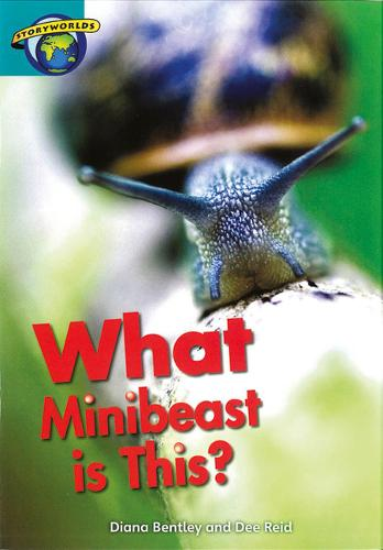 Fact World Stage 6: What Minibeast Is This? - FACTWORLD (Paperback)