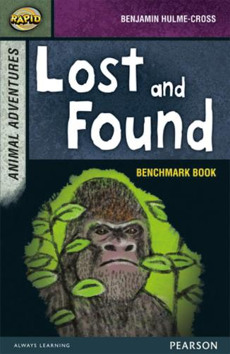 Rapid Stage 7 Assessment book: Lost and Found - Rapid Upper Levels (Paperback)