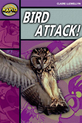 Rapid Stage 1 Level B: Bird Attack! Reader Pack of 3 (Series 2) - RAPID SERIES 2