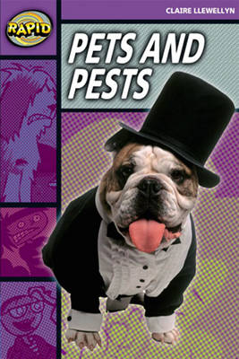 Rapid Stage 1 Set B: Pets and Pests Reader Pack of 3 (Series 2) - RAPID SERIES 2