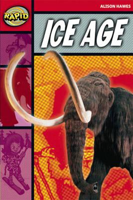 Rapid Stage 2 Set B: Ice Age Reader Pack of 3 (Series 2) - RAPID SERIES 2