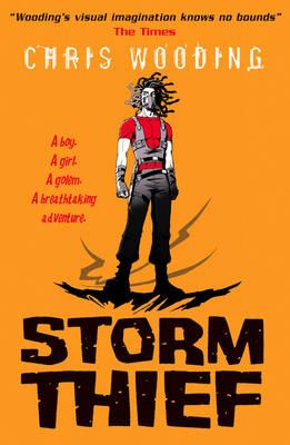 Storm Thief (Paperback)