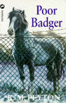 Poor Badger (Paperback)