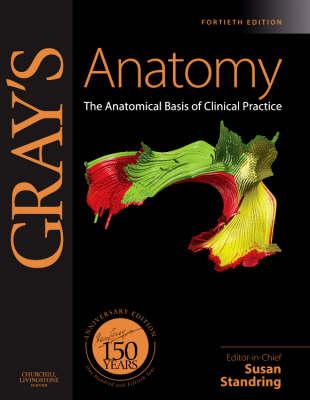 Gray's Anatomy: The Anatomical Basis of Clinical Practice - Gray's Anatomy (Hardback)