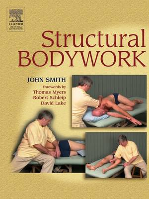 Structural Bodywork: An introduction for students and practitioners (Paperback)