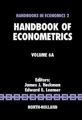 Handbook of Econometrics: Volume 6A - Handbook of Econometrics (Hardback)