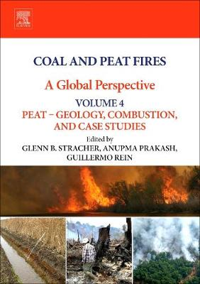 Coal and Peat Fires: A Global Perspective: Volume 4: Peat - Geology, Combustion, and Case Studies (Hardback)