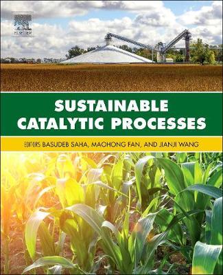 Sustainable Catalytic Processes (Hardback)