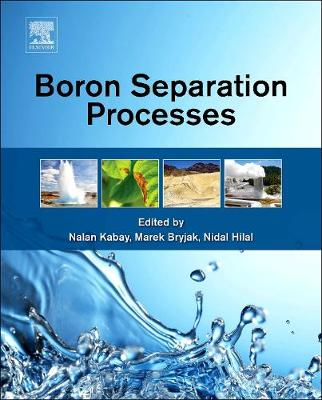 Boron Separation Processes (Hardback)
