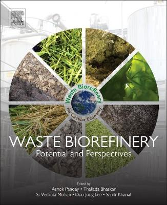 Waste Biorefinery: Potential and Perspectives (Paperback)