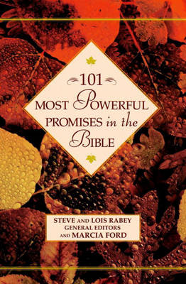 101 Most Powerful Promises in the Bible (Hardback)