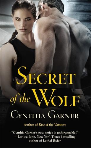 Secret of the Wolf: Number 2 in series - Warriors of the Rift (Paperback)