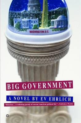 Big Government (Paperback)