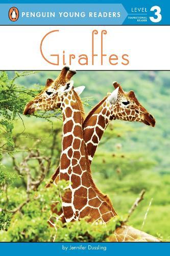 Giraffes (Paperback)