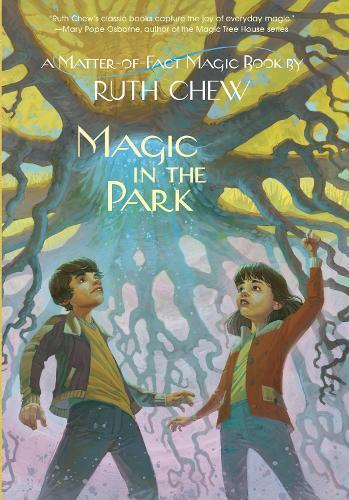 Magic In The Park (Paperback)