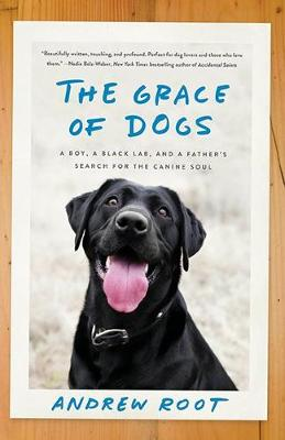 The Grace Of Dogs: A Boy, a Black Labrador and a father's search for the canine soul (Paperback)