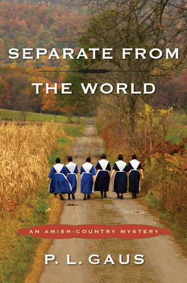 Separate From The World (Paperback)