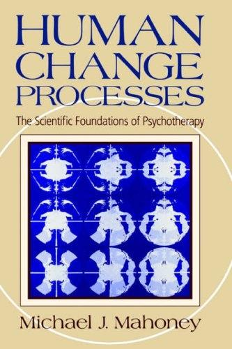 Human Change Process: The Scientific Foundations Of Psychotherapy (Hardback)