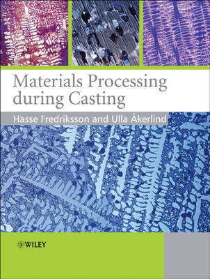Materials Processing During Casting (Paperback)