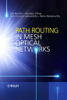 Path Routing in Mesh Optical Networks (Hardback)