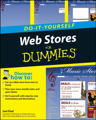 Do-it-yourself Web Stores For Dummies (Paperback)