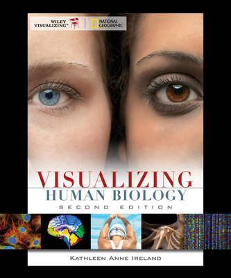 Visualizing Human Biology - Visualizing Series (Paperback)