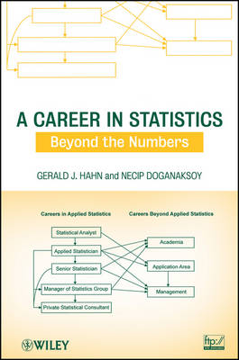 A Career in Statistics: Beyond the Numbers (Paperback)